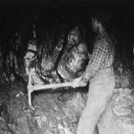 Ymir Miners