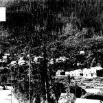 Ymir 1905