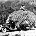 Ed Emilson 1928