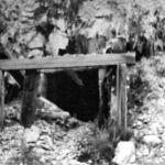Black Cock Mine 1956